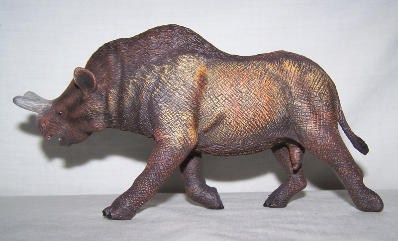 Megacerops CollectA