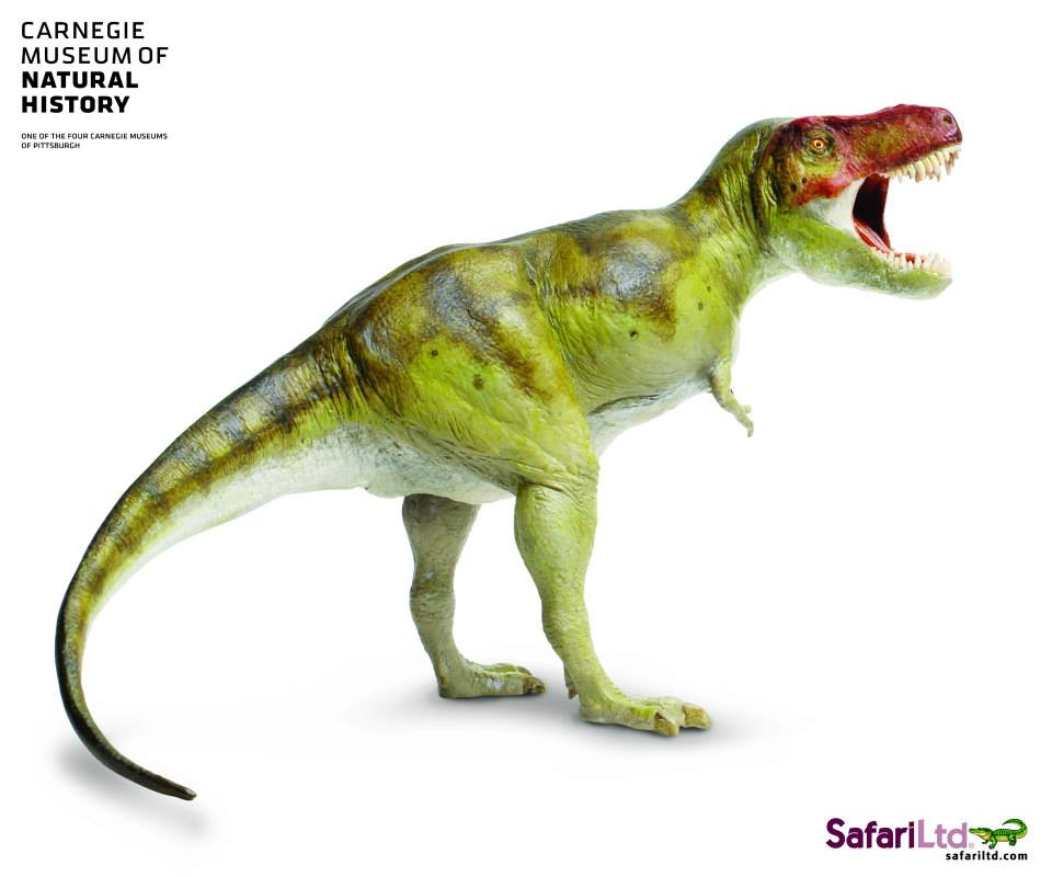 Tyrannosaurus rex 25th Anniversary Carnegie Collection