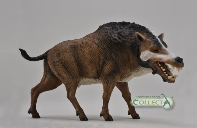 daeodon_collecta_2015.jpg