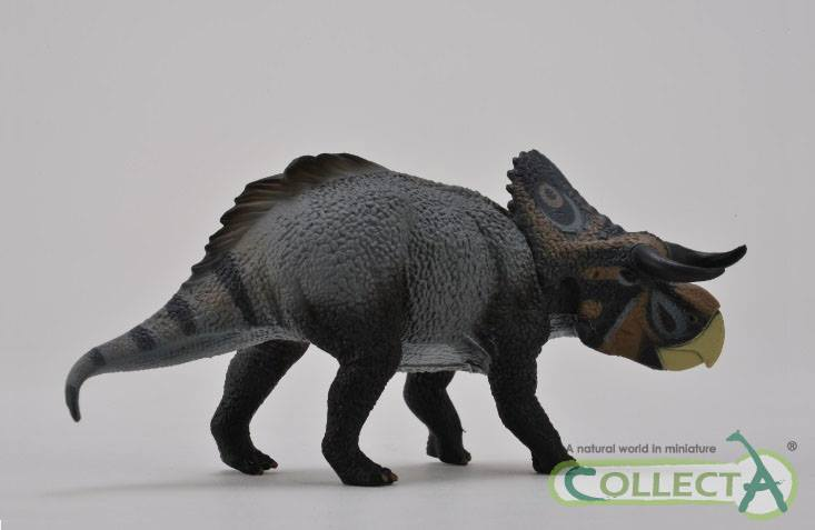 nasutoceratops_collecta_2015.jpg
