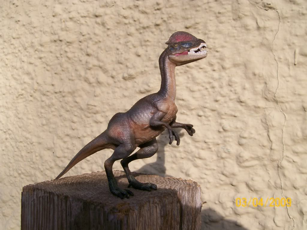 Dilophosaurus (Wild Safari by Safari Ltd)