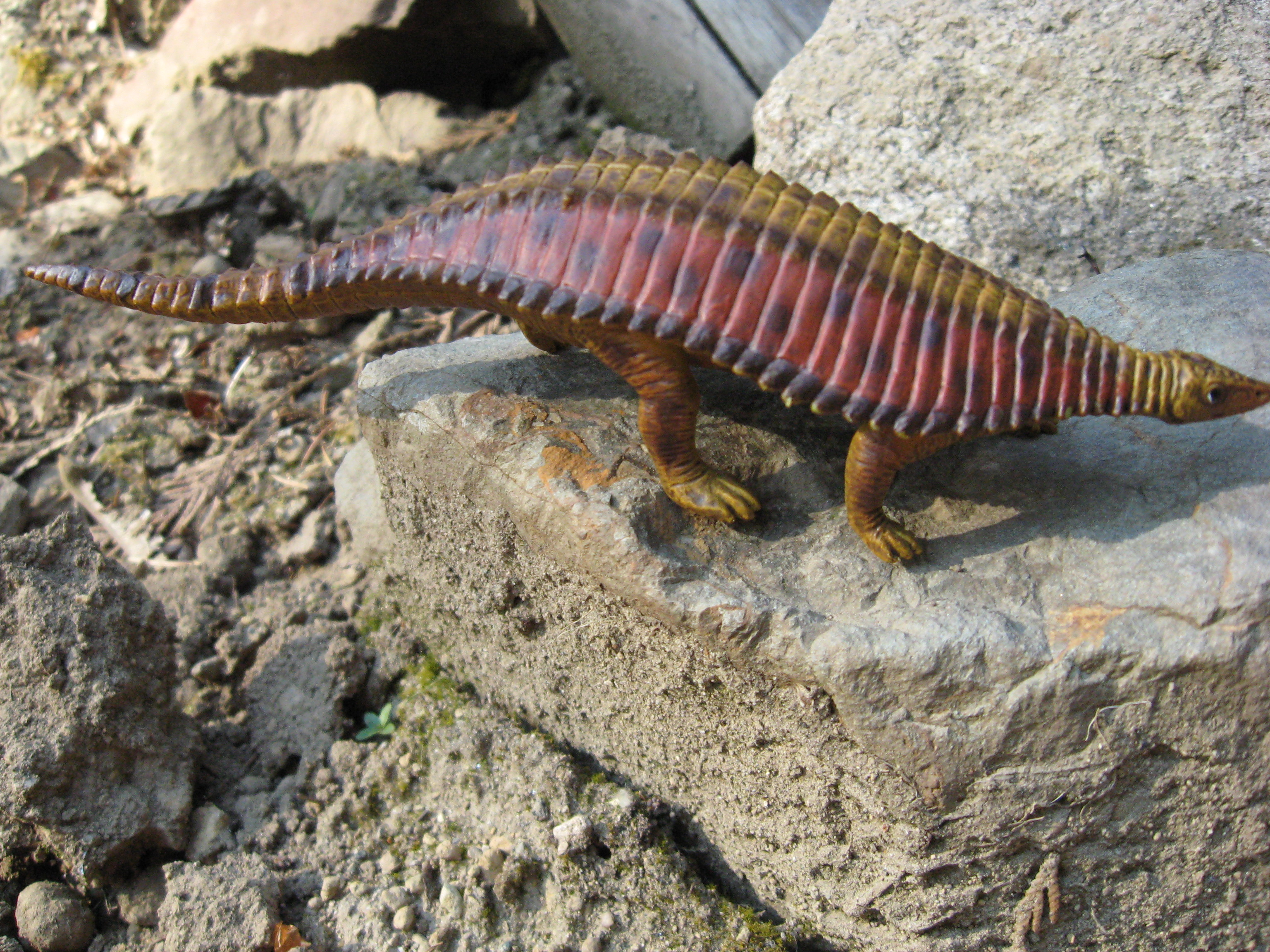 Paratypothorax (The World of Dinosaurs by Bullyland)