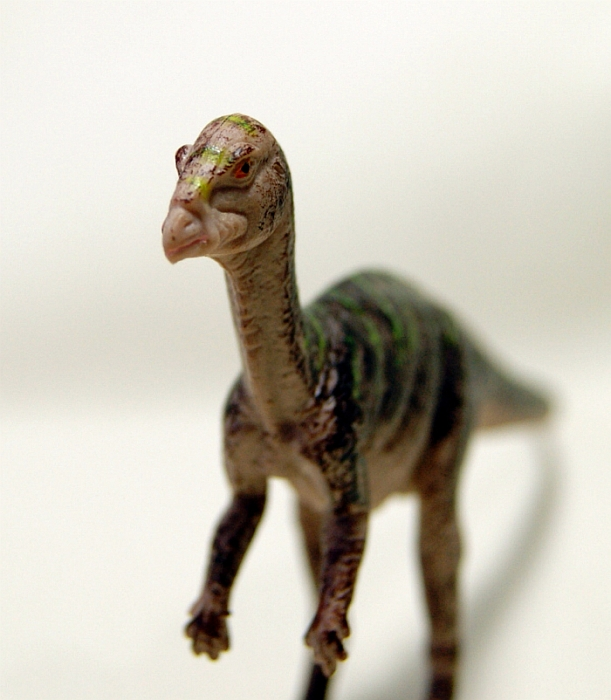 Walking With Dinosaurs Toys : Leaellynasaura walking with dinosaurs by toyway