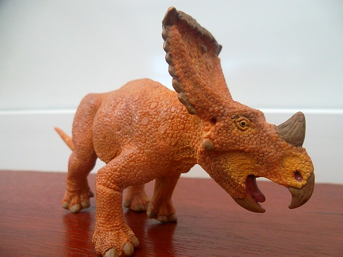 Much more than that  though   Vagaceratops