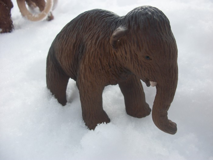 Schleich woolly Mammoth baby 1