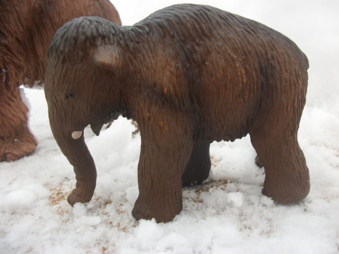 Schleich woolly Mammoth baby 4