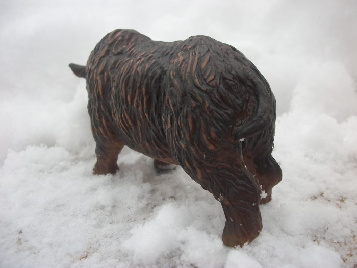 woolly rhinoceros 5