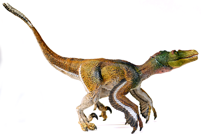 Dinosaur Toy Blog | Th...