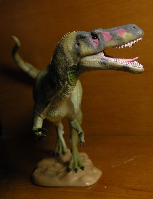 collecta torvosaurus