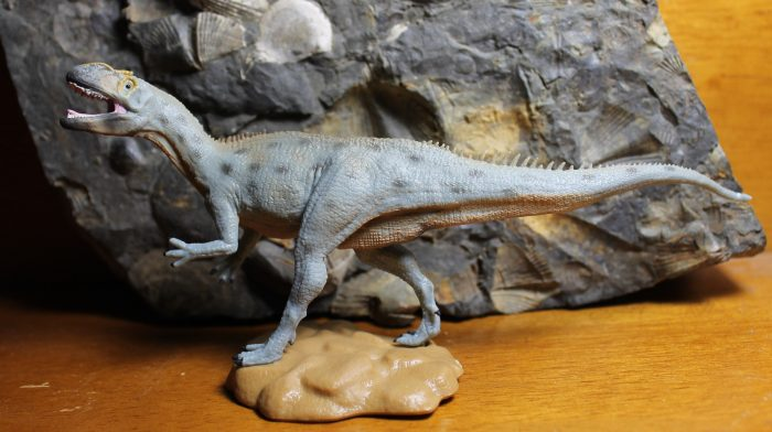 Metriacanthosaurus CollectA
